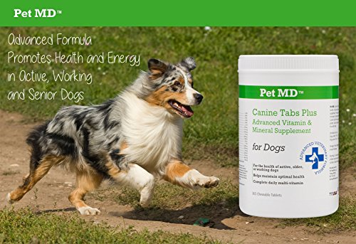 Pet-MD-Canine-Tabs-Plus-365-Count-Advanced-Multivitamins-for-Dogs-Natural-Daily-Vitamin-and-Mineral-Nutritional-Supplement-Liver-Flavored-Chewable-Tablets