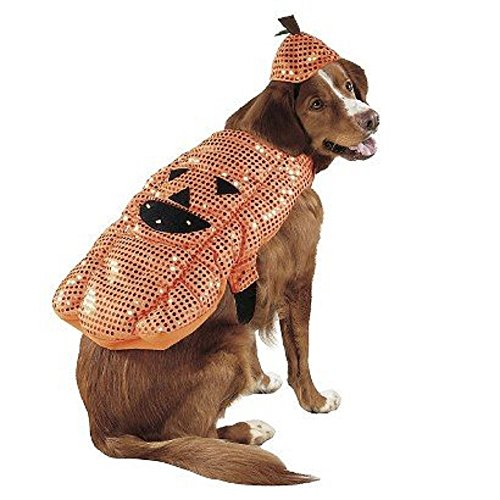 Pet Costume LED Pumpkin (Extra Large) by Target