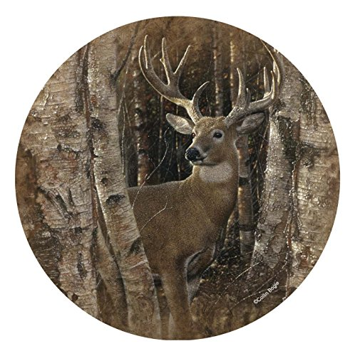 Thirstystone Stoneware Coaster Set, Birchwood Buck ()