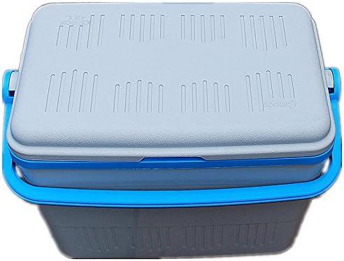 Carrefour 42L con aislamiento tamaño Extra grande caja de hielo Nevera portátil enfriador de Icebox Cool con asa - idónea para Picnic comida bebida etc.: Amazon.es: Deportes y aire libre