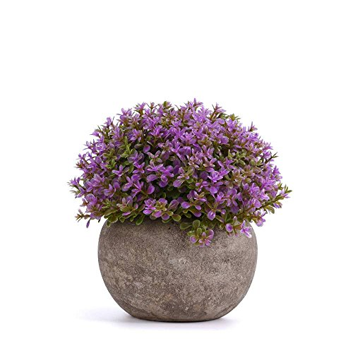 Round Artificial Potted Plant for Home Office Decor Fake Purple Plant Indoor 5 Inch x 5 Inch  Set of 1 by Shuheng