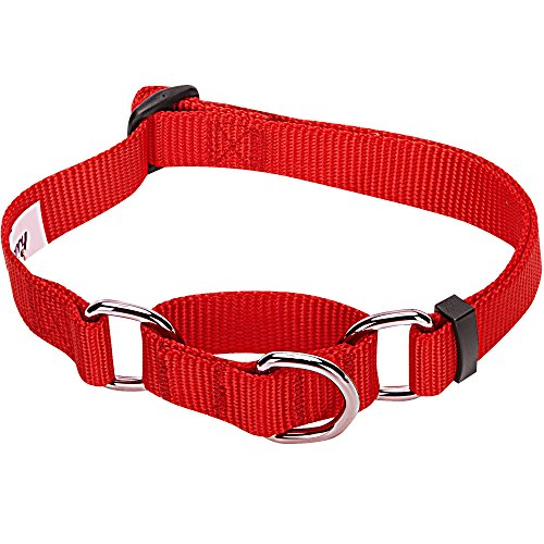 Blueberry Pet 19 Colors Safety Training Martingale Dog Collar, Rouge Red, Medium, Heavy Duty Nylon Adjustable Collars for Dogs