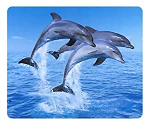 The beauty of the landscape Dolphin oblong mouse pad by customized Cases & Mousepads