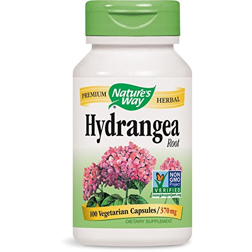 Nature#039s Way Premium Herbal Hydrangea Root 370 mg 100 Vcaps