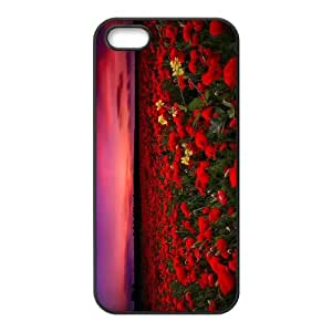 Poppy The New iPhone 5,5S 5SE Phone Case USA5253946