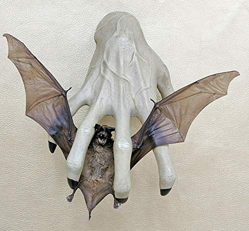 Real Taxidermy Fruit Bat Otomops Formosus with Zombie Hand Wall Hanging Display