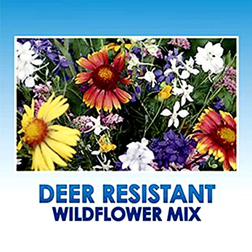 Deer Resistant/Tolerant Wildflower Seeds Bulk + 8 Bonus Gardening eBooks + Open-Pollinated Wildflower Seed Mix Packet, Non-GMO, No Fillers, Annual, Perennial Wildflower Seeds for Planting - 1 ()