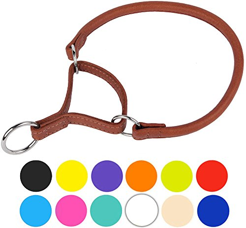 CollarDirect Rolled Martingale Dog Collar, Training Genuine Leather Collars Dogs Small Medium Large Puppy Black Pink Brown White Red Green Blue Orange (Brown, Neck Fit - White Collar Dog Martingale