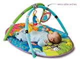 Taf Toys Safari Gym. Encourage Baby's Senses and Motor Skills Development