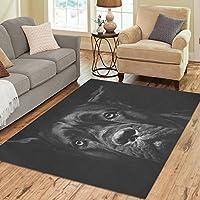 Modern Collection Black Cane Corso Dog Custom Indoor Soft Carpet Area Rug 7x 5