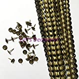 Ochoos 50meters/lot 11mm Brass Plated Daisy Flower Nail Strips, Home/Garden Decorative Tape Tacks,Upholstery Nail