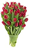 Blooms2Door 30 Red Tulips Fresh Flowers, Cut-to-Order & USA Homegrown Deal