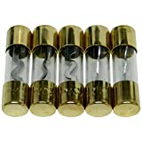 Bass Rockers 5 Gold Plated AGU Fuses 100A - AGU100A