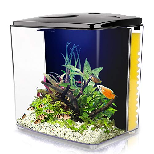 YCTECH 1.4 Gallon Square Betta Aquarium Starter Kits, Fish Tank with LED Light and Filter Pump White Black (220black)