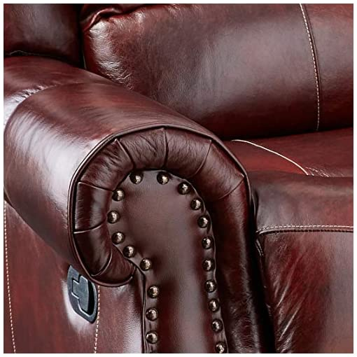 Farmhouse Living Room Furniture Cambridge Telluride Leather Double Reclining Sofa, Brown farmhouse sofas and couches