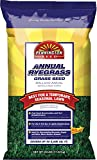 Pennington Annual Ryegrass Retail Bag to Overseed Warm Season Grasses, 25 lb