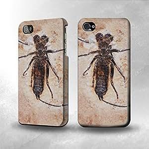 Apple iPhone 4 / 4S Case - The Best 3D Full Wrap iPhone Case - Arachnids Fossil