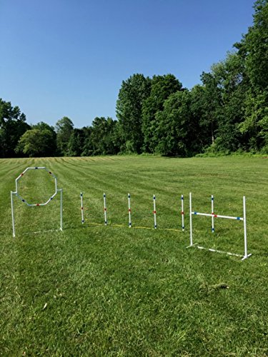 Expert Dog 9-Piece agility course kit