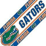 NCAA Florida Gators Wall Border Roll - College
