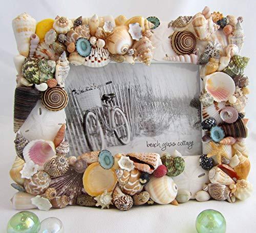 Beach Decor Nautical Seashell Frame, COLORED Shells, 5x7