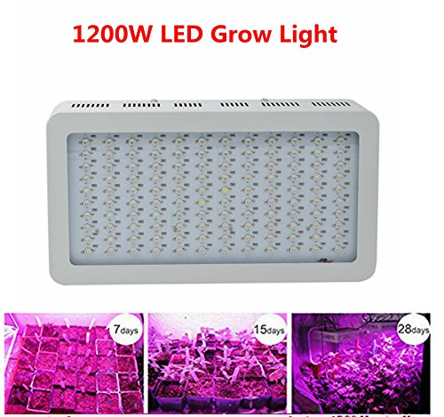 Specturm Lighting Greenhouse Hydroponic Flowering product image