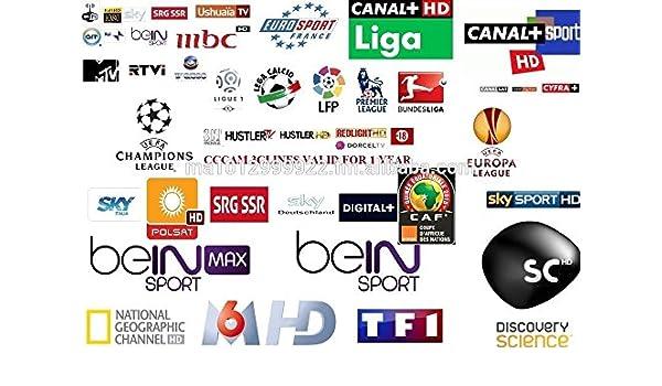 ARBUYSHOP Cccam Europa Cline Server para 6 meses de validez España Cielo Reino Unido Alemania Francia Portugal Italia con 3 RCA línea av envío libre de DHL: Amazon.es: Electrónica