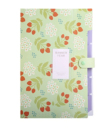 Floral Covered Box (Phyxin Floral 6-Pocket Folders Clipboard Loose-Paper Accordion Document File Folder,Green)