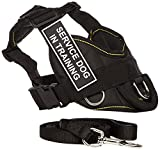Dean & Tyler's DT Fun Chest Support ''SERVICE DOG IN TRAINING '' Harness, Small, with 6 ft Padded Puppy Leash.