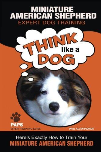 MINIATURE AMERICAN SHEPHERD   Expert Dog Training: