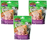 (3 Pack) Kaytee Fiesta Yogurt Straw Chip Snacks for Small Animals, 3.5-Ounce