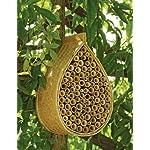园丁供应公司梅森蜜蜂之家
