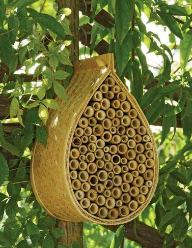 Gardener's Supply Company Mason Bee House