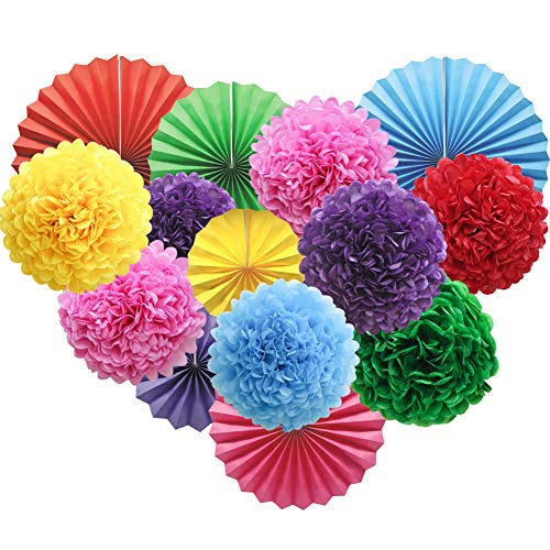 Colorful Hanging Paper Party Decorations, Round Paper Fans Set Paper Pom Poms Flowers for Birthday Wedding Graduation Baby Shower Events Accessories