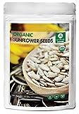 Cheap Organic Sunflower Seeds (2lbs) by Naturevibe Botanicals, Gluten-Free & Non-GMO (32 ounces)