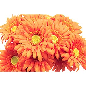 CraftMore Orange Colored Gerbera Daisy Stems 14 Inch Set of 12 58