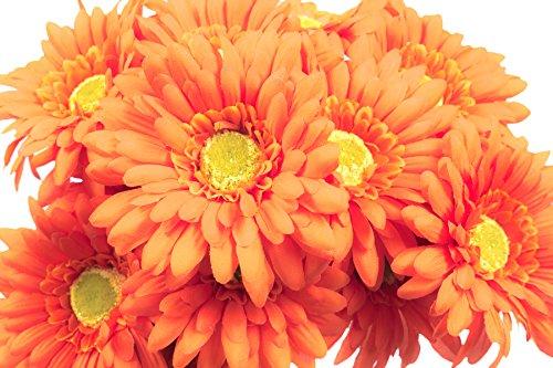 (CraftMore Orange Colored Gerbera Daisy Stems 14 Inch Set of 12)