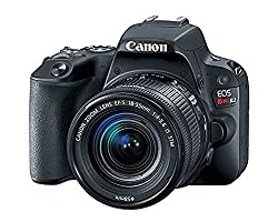 Image of the product Canon EOS Rebel SL2 EF S that is listed on the catalogue brand of Canon. It is scored with a 4.4 over 5.