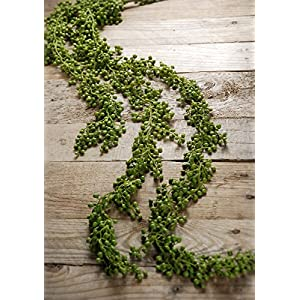 Way Home Fair String of Pearls Succulent Garland 4ft 117