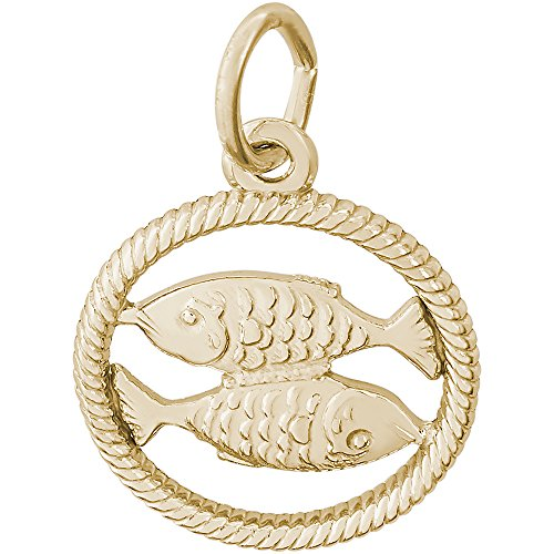 (Rembrandt Charms 10K Yellow Gold Pisces Fish Charm (15.5 x 15.5 mm))