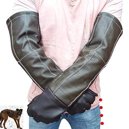 Zxcvlina Long Sleeve Protective pet Gloves Animal Treatment Anti-Bite/Scratch Gloves Dog Cat Bird Snake Parrot Lizard Wildlife Protection Gloves (Size : 60cm) ()