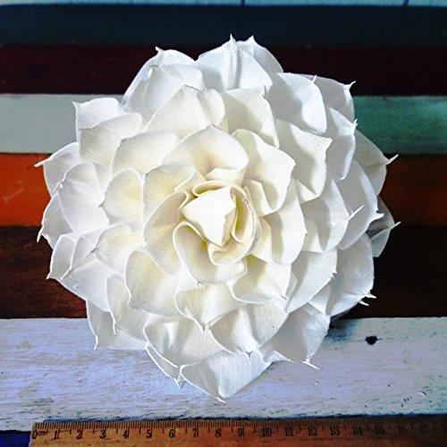 6 Dahlias Sharp Edge Sola Wood Diffuser Flowers 15 cm Dia.