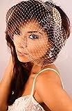 Leslie Li Crystal Bridal Birdcage Veil Gold Crystal Champagne Blush Pearls Brooch One Size Ivory 27-30939