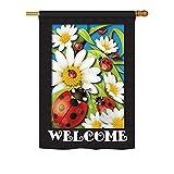 Breeze Decor BG-H-104068-IP Ladybug Heaven Decorative Vertical House Flag, 28″x 40″, Multicolor For Sale