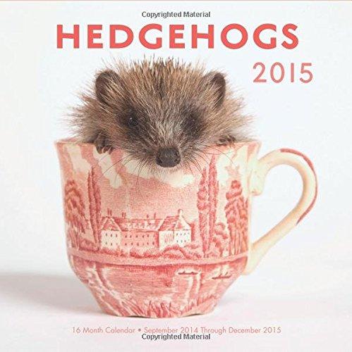 Hedgehogs 2015: 16-Month Calendar September 2014 through December 2015