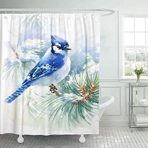 """Avagea Decor Shower Curtain, 72""""x 72"""" Waterproof Shower Curtain Curtains Green Painting Watercolor Bird Blue Jay Winter ristmas Hand White Snow Forest Cute Decor Bathroom Eco Friendly Anti Bacterial"""