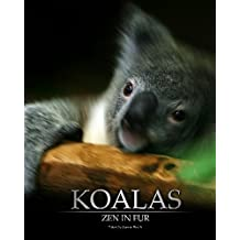 Koalas: Zen In Fur, BW Edition by Joanne Ehrich (2007-06-01)
