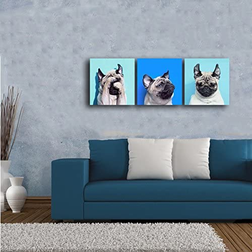 Gardenia Art Stretched and Framed 3 Pieces per Set Animal World Series 13 Pug Puppy Modern Canvas Wall Art Paintings Puppy Blue Artwork for Bedroom Living Room Decoration,12x12 inch per Piece