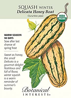 Squash Winter Delicata Honeyboat Organic Seed