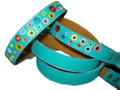 Puppy Loki Leather (The Cool Puppy Loki Puppy Leather Dog Collar and Leash Set - Turquoise Medium (10-12 inches))