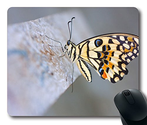 Custom Gaming Mouse Pad with Butterfly Wings Surface Patterns Non-Slip Neoprene Rubber Standard Size 9 Inch(220mm) X 7 Inch(180mm) X 1/8(3mm) Desktop Mousepad Laptop Mousepads Comfortable Computer Mouse Mat